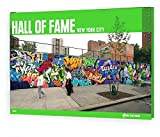 Hall Of Fame: New York City Collector's Edition: 16 (On The Run Books)